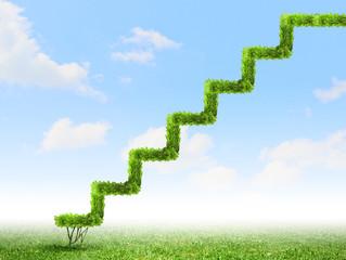 Steps to landscape career success