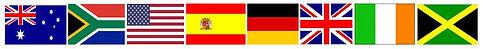 8 flag logoCapture.JPG
