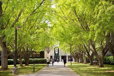sacramento-state-campus.jpg