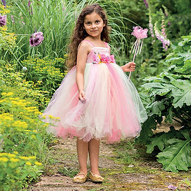 Summer Fairy Costume.jpg