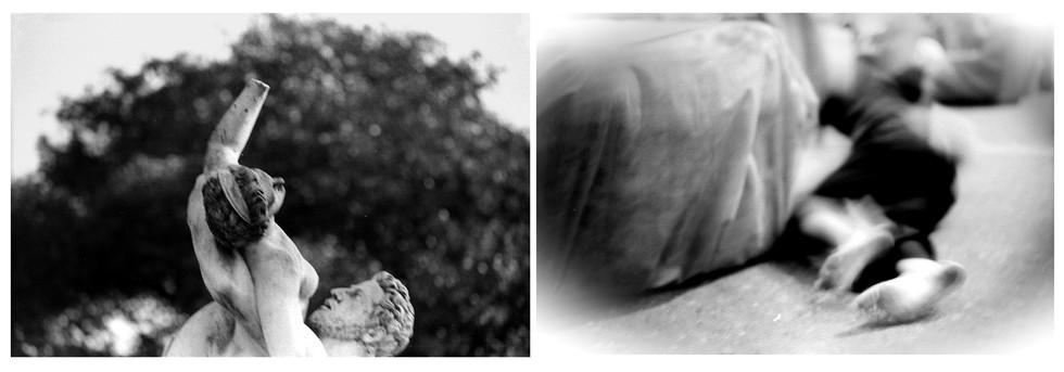 Fotografía. díptico medidas variables