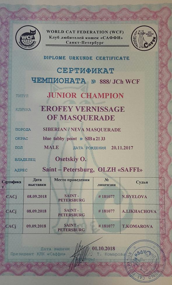 юниор чемпион.jpg
