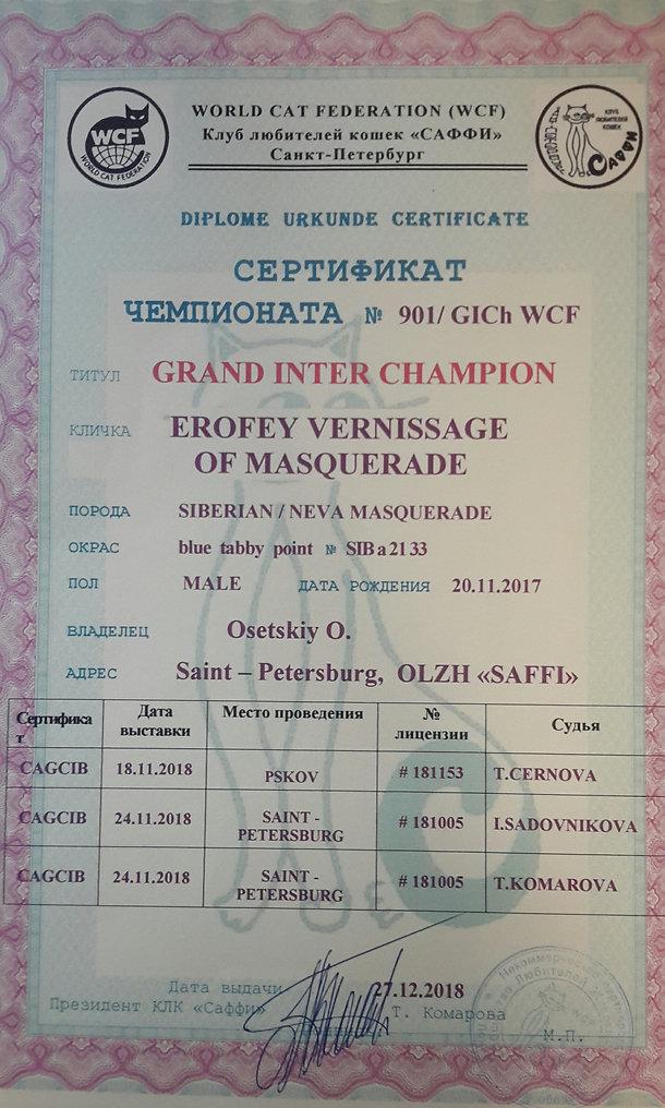 большой международный чемпион.jpg