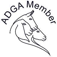 adga-member-only-logo-web.jpg