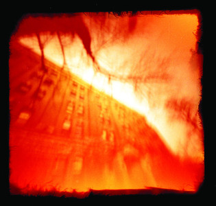 Red Scale Pin Hole