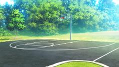 Rem's Basketball Court