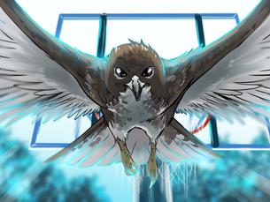 nahele bird_intro.png