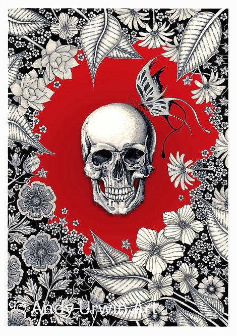 'Skull & Butterfly'