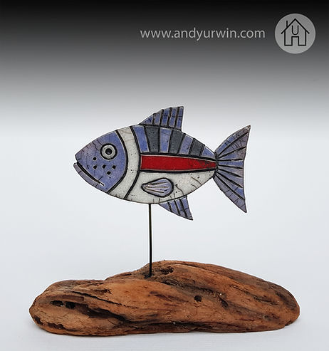small fish on driftwood