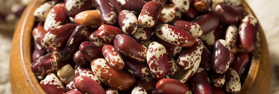 Jacob's Cattle Drying Bush Bean