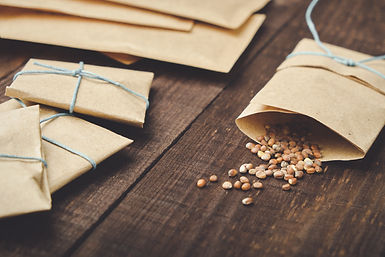 Paper bags with seeds for planting. Spri