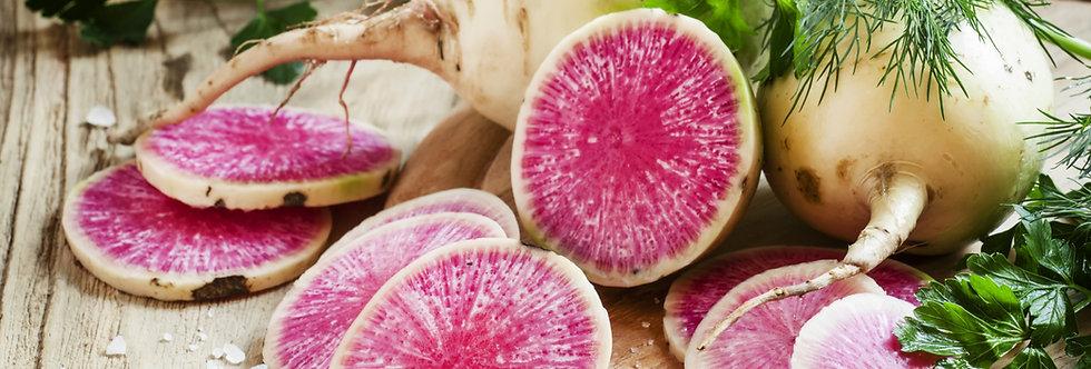 Radish, Watermelon (Shinrimei)