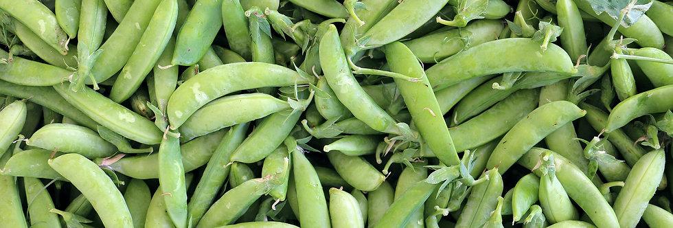 Little Marvel Peas