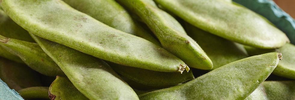 Henderson's Bush Lima Bean