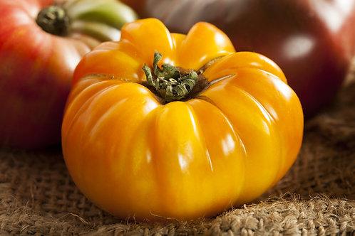 Cherokee Dr. Wyche's Yellow Tomato