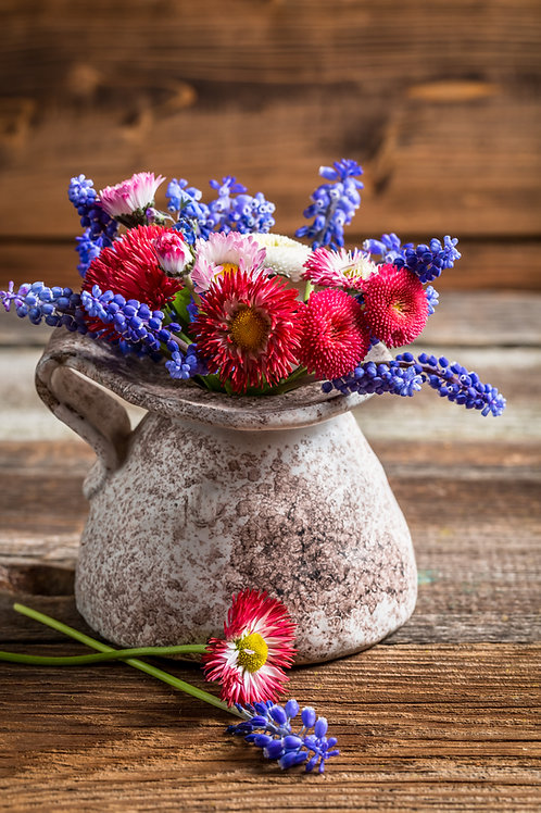 Wildflowers- Cut Flower Mix