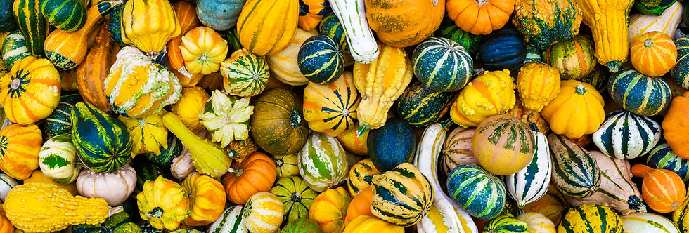 Gourds - (Ornamental Mixed)