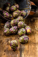 Fresh Purple Brussels sprouts on a backg