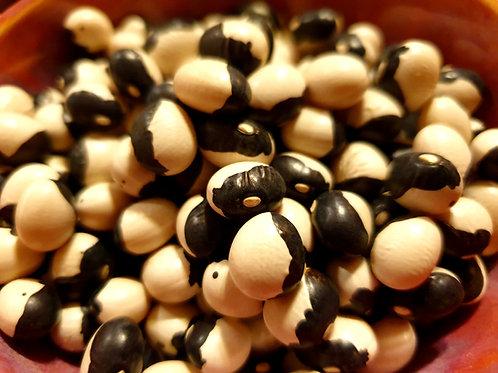 Calypso / Ying-Yang Beans