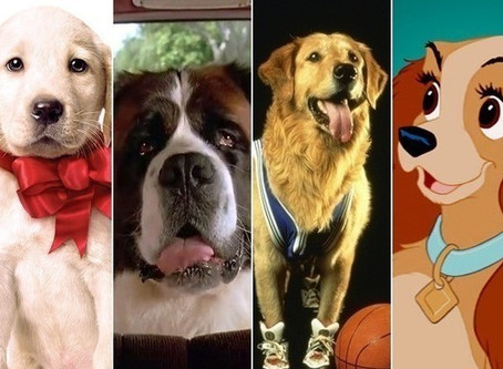 Take 5: Movie Dogs