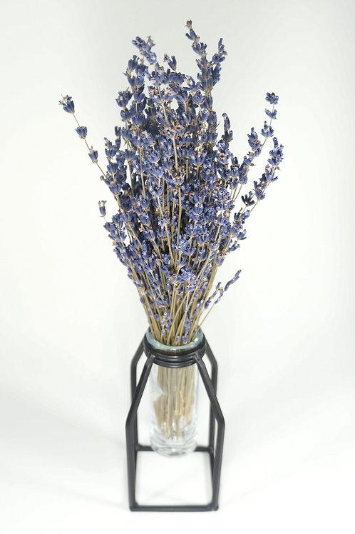 Vase + Dried Bundle