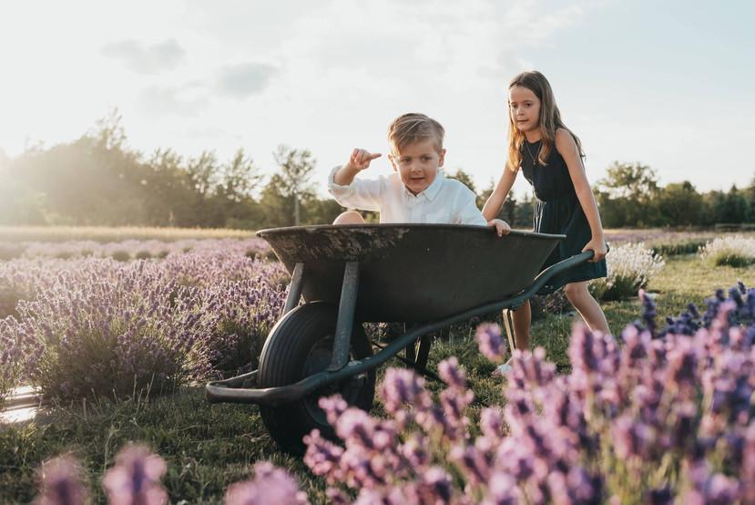 kids wheelbarrow lavender.jpg