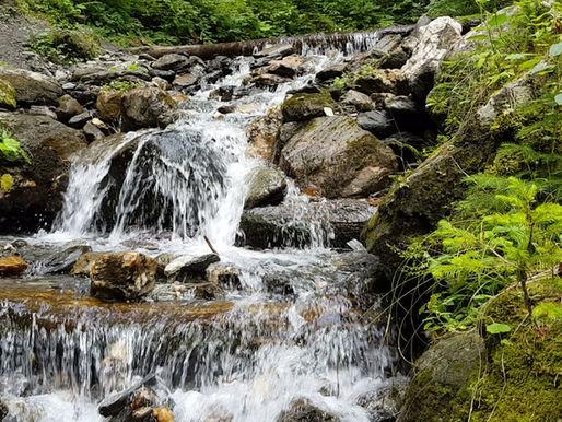 Fluss und Gegenwart