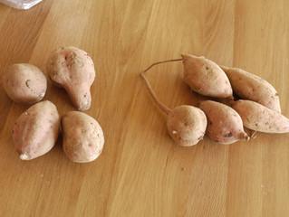 続)石屋の石焼き芋(検証結果)