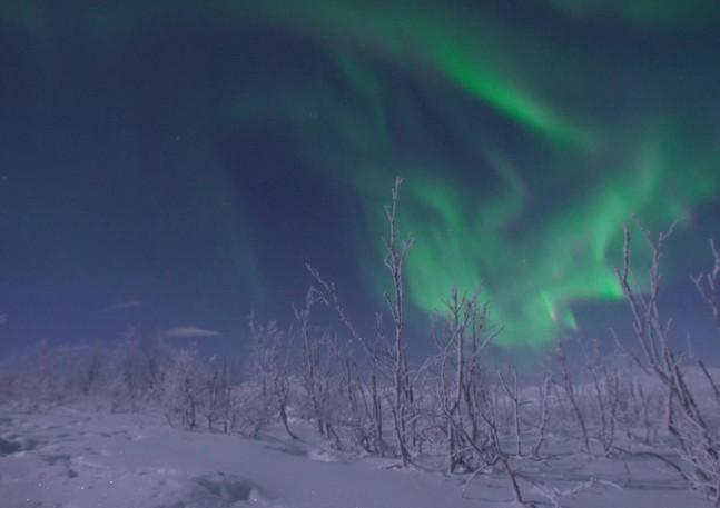 - Northern Lights - Swedish Lapland