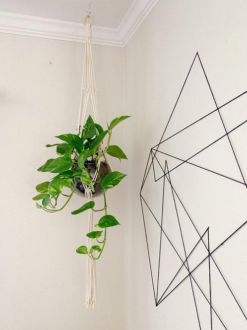 """(W) Macrame Plant Hanger """"Freya"""""""