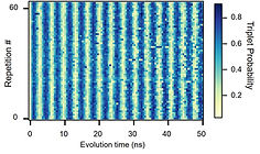 repeated Larmor oscillations.jpg