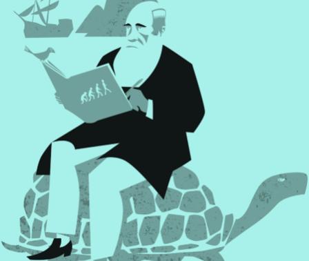 לומדים אבולוציה: כיתות ג' עד ו