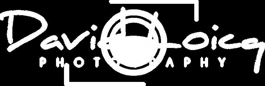 logo_david_loicq_blanc_PNG.png