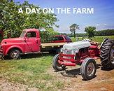 Farm Day.jpg
