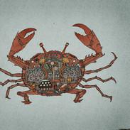 Krabbe_hellerhintergrund.jpeg