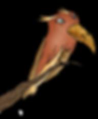Vogel_homepage.png