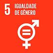 objetivos globais para o desenvolvimento sustentável 5 igualdade de gênero