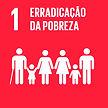 objetivos globais para o desenvolvimento sustentável 13 erradicação da pobreza