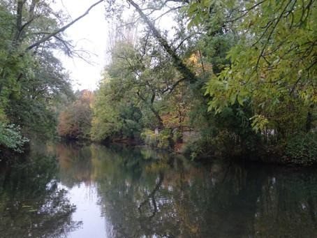 Randonnée de Boussy-Saint-Antoine à Montgeron du Dimanche 10 novembre 2019
