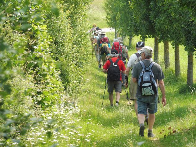 Randonnée avec notre groupe au milieu des vignes