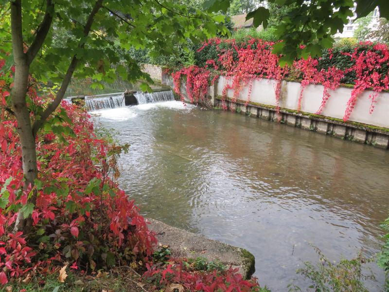 Photo de Montargis au bord de l'eau avec des fleurs rouge