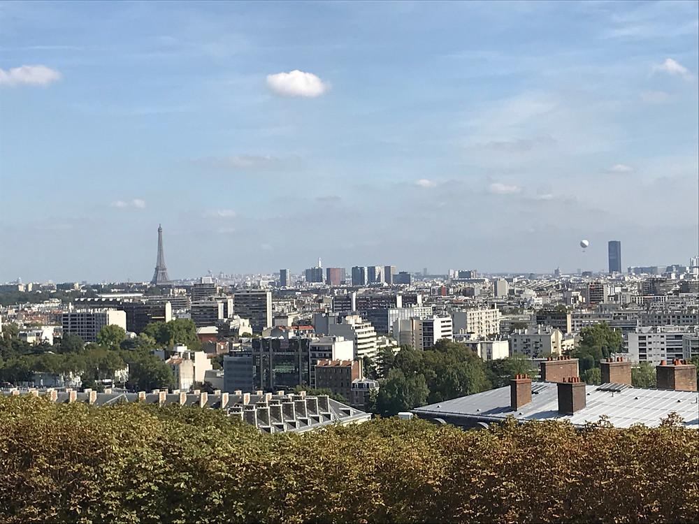 Une magnifique vue de Paris avec la Tour Eiffel et les immeubles hausmaniens
