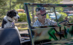 Guy & Dog in Jeep-0075-David Concannon