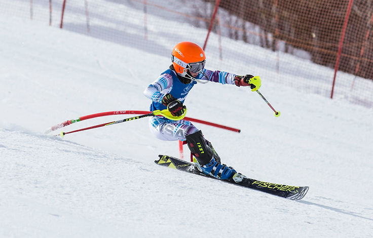 Sports & recreation law, skiing, accidents