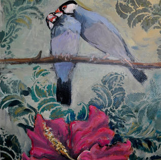 Java birds and Hibiscus