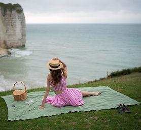 Couverture picnic.jpg