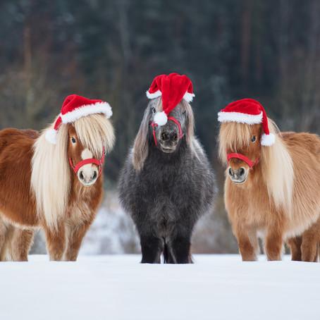 Stall Eide ønsker alle sine kunder en riktig God Jul!