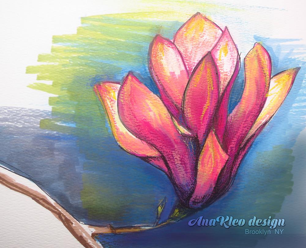 AnaKleo art Magnolia blossom drawing