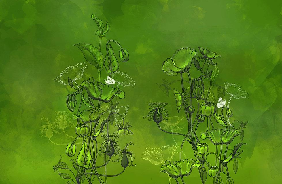flowers-PNG-free-illustration_edited.jpg