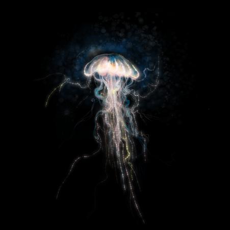 Magic Glow Jellyfish Illustration. Creative sealife card with medusa